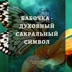 бабочка значение символ духовный эзотерический