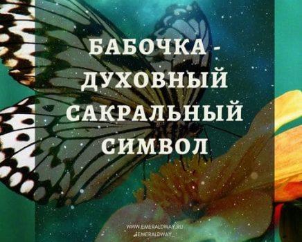 Бабочка — духовный сакральный символ.
